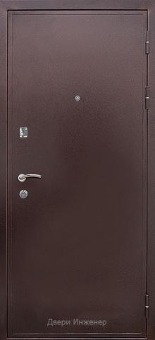 Порошковая дверь DR228