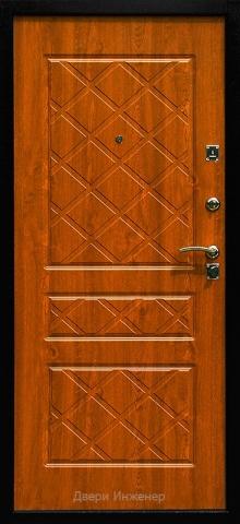 Порошковая дверь DR459