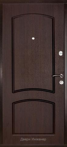 Дверь с ковкой DR264