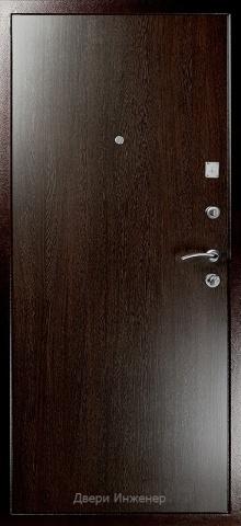 Порошковая дверь DR162