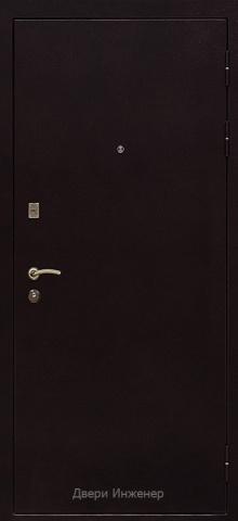 Порошковая дверь DR216
