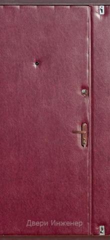 Тамбурная дверь DR399