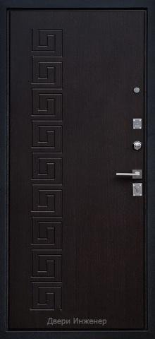 Порошковая дверь DR208