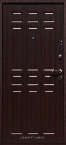 Порошковая дверь DR207