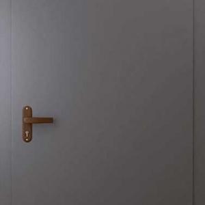 Техническая дверь DR109