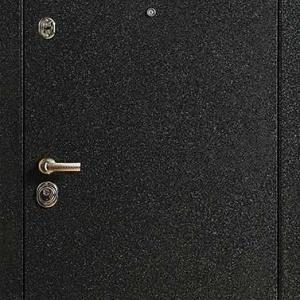 Порошковая дверь DR212