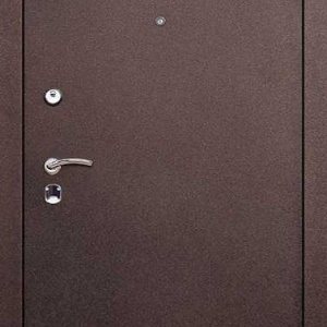 Порошковая дверь DR103