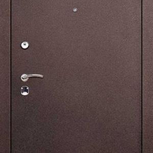 Порошковая дверь DR206
