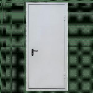Металлическая сплошная дверь